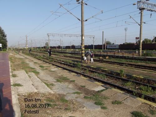 DSCF5040.jpg