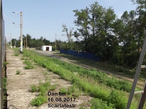 DSCF5130.jpg