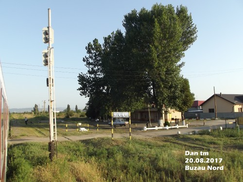 DSCF5609.jpg