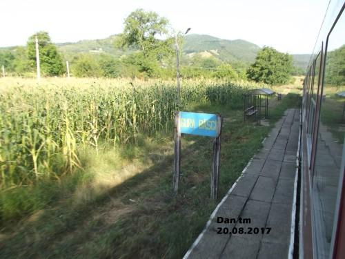DSCF5688.jpg