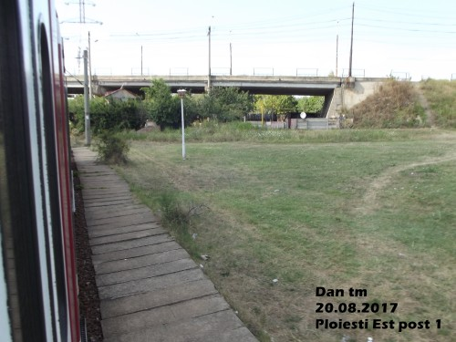 DSCF5906.jpg