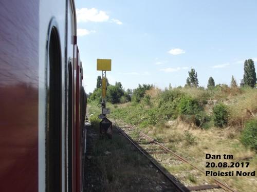 DSCF5910.jpg