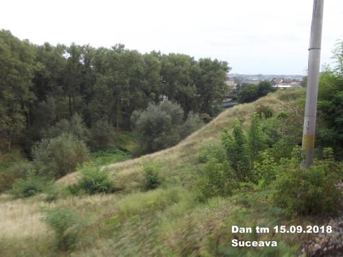 DSCF0198.jpg