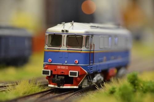 DSC 4800