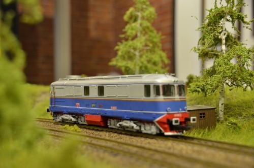 DSC 4801