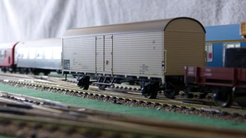 P1290728.jpg
