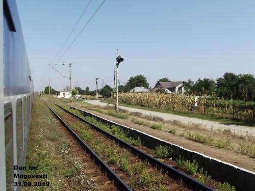 DSCF4982.jpg