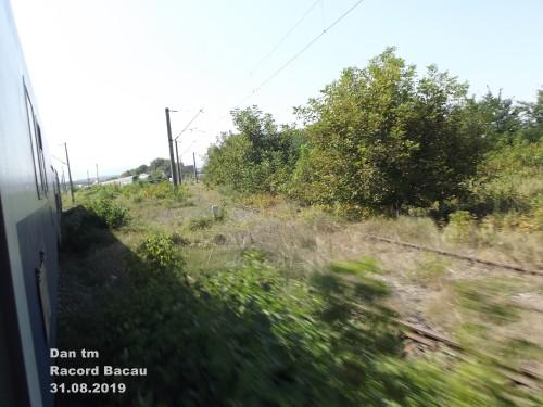 DSCF5057.jpg